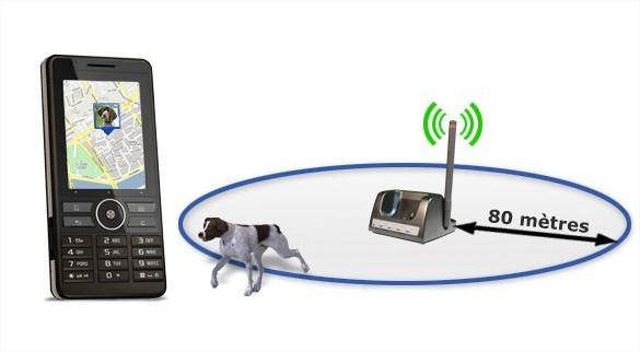 Aujourd'hui même les chiens envoient des SMS
