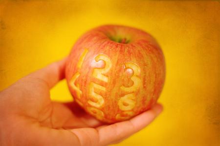 L'iPhone 5 en photo ( humour )