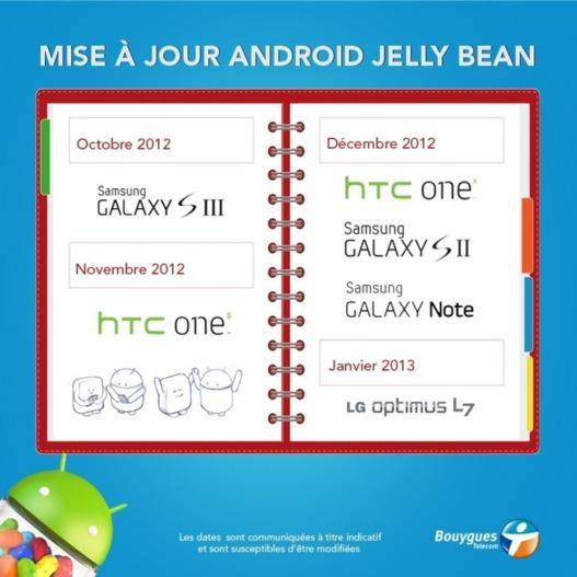 Android 4.1 Jelly Bean - Le calendrier de mise à jour chez Bouygues Telecom