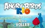 Angry Birds Rio Beach Volley pour la fin de semaine