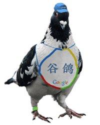 Google Pigeon - L'info au coeur de l'action