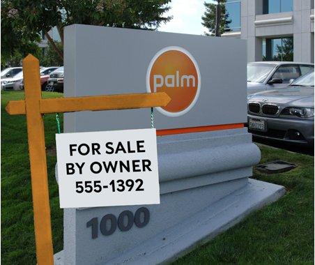 Palm est à vendre