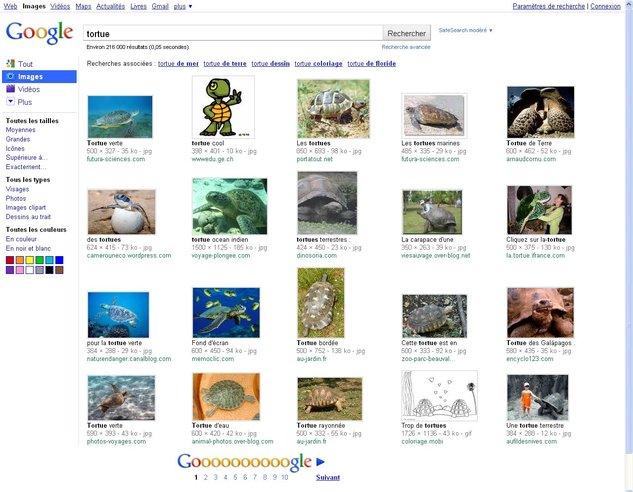 Google Images fait peau neuve