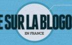Résultats de l'enquete sur la blogosphère française 2010 en 1 image