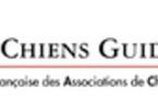 Arnaque téléphonique concernant les chiens guides d'aveugles (FFAC)
