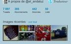 Twitter lance les galeries photos sur les profils d'utilsateurs